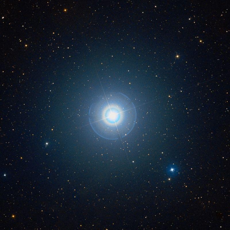 La Stella Polare (Polaris)