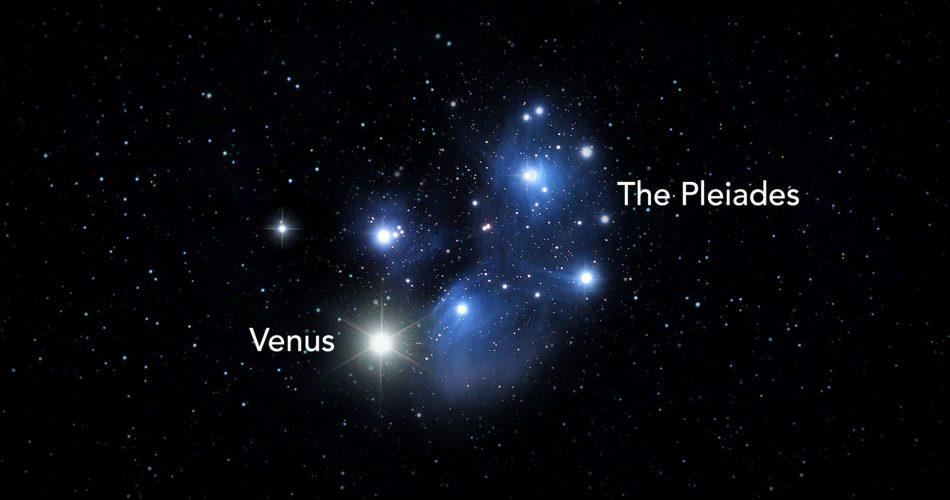 Venere e le Pleiadi